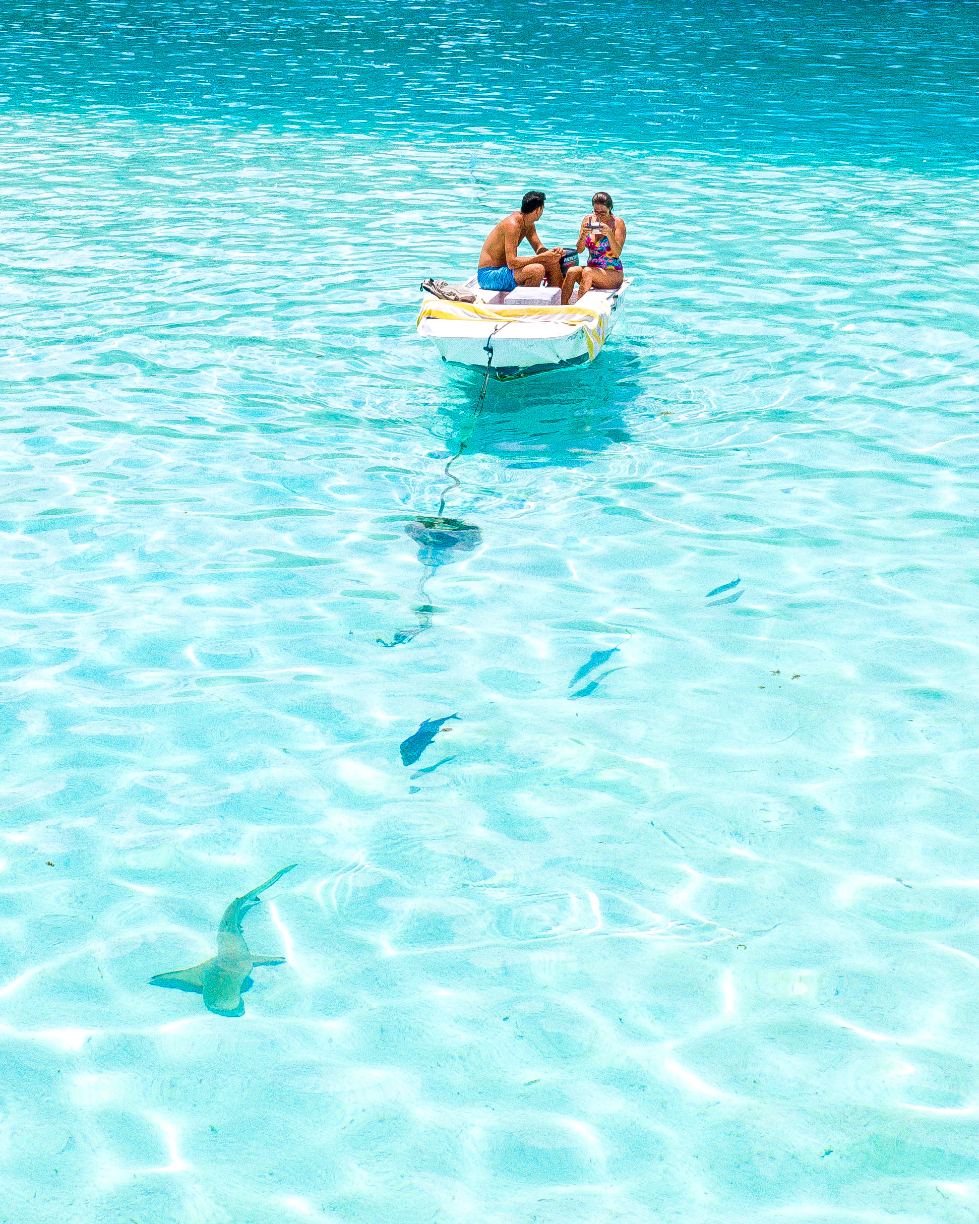 girl and boy sitting in a small boat in the ocean there is a black tip reef shark swimming in front of the boat. Image attached to Best drone shots by Ashley. Taken on the island of Moorea, French Polynesia