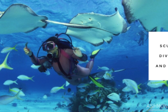 girl scuba diving with lots of white and yellow fish and rays around her